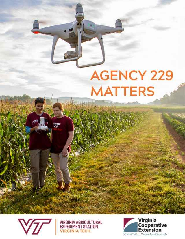Agency 229 Report